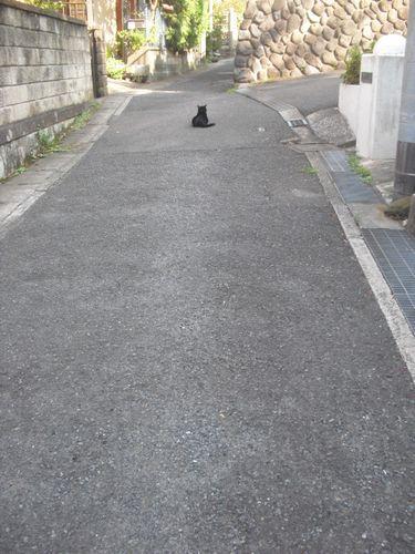 01) 知られること少なき、或る時期の東海道古道にたたずむ '相模三久オ