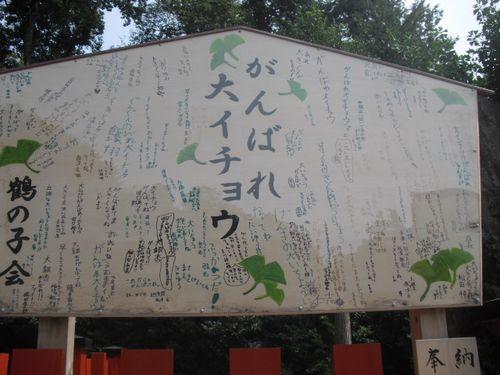 02) 鎌倉「鶴岡八幡宮」倒壊した大銀杏その後