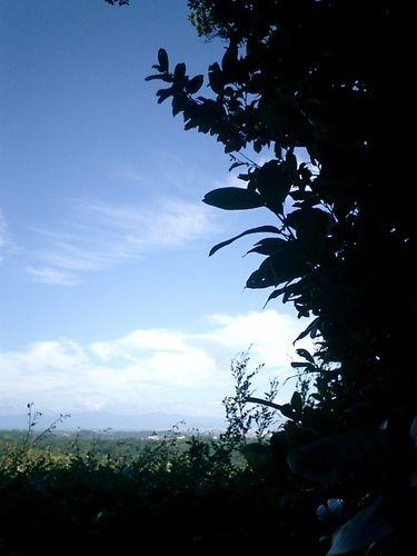 028) 「勝上嶽展望台」。パノラマ右右_9:41am