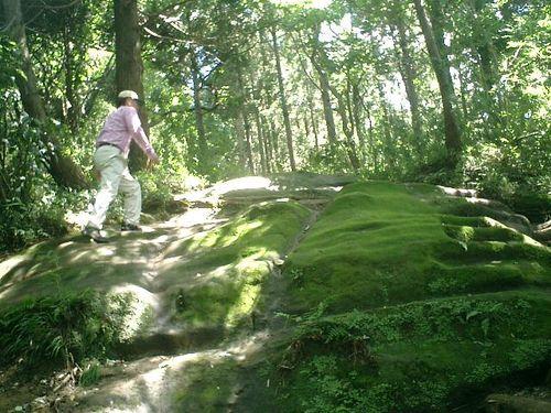 """036) """"天園ハイキングコース"""" 進行中。'太平山'山頂直前、急傾斜の岩"""
