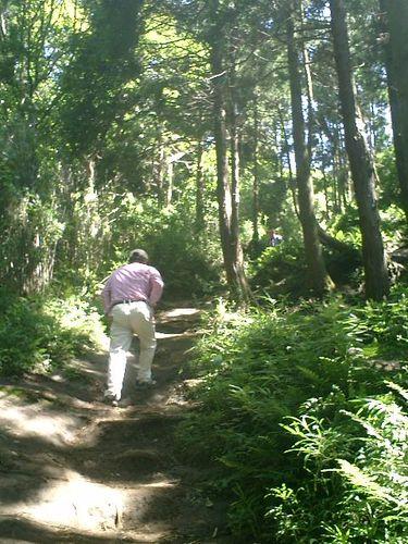 """037) """"天園ハイキングコース"""" 進行中。'太平山'山頂直前、急斜面。_1"""