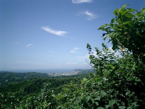 """040) """"天園ハイキングコース"""" 進行中。'太平山'山頂から相模湾~鎌倉"""