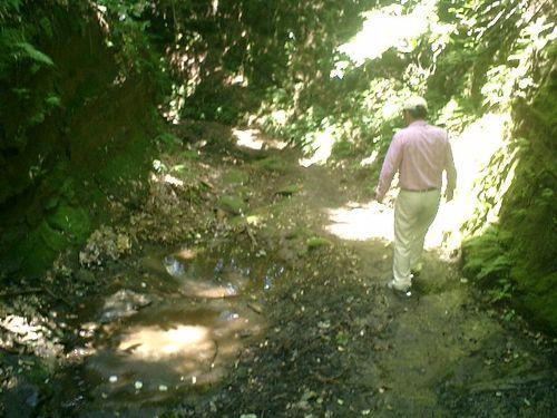 """053) """"天園ハイキングコース"""" 進行中。どこからどこまでかを知らないが"""