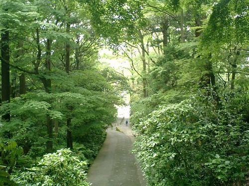 06) 日蓮宗「長興山 妙本寺」_鎌倉市大町