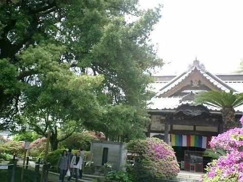 05) 浄土宗「祇園山 安養院田代寺」