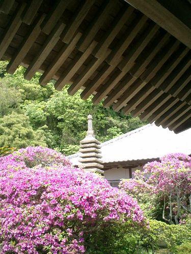 07) 浄土宗「祇園山 安養院田代寺」