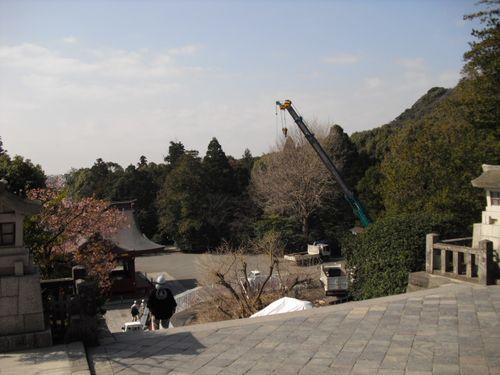 08) 鎌倉「鶴岡八幡宮」