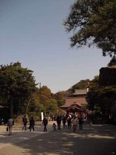 11) 鎌倉「鶴岡八幡宮」