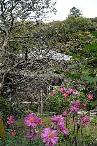 03) 鎌倉市二階堂「瑞泉寺」
