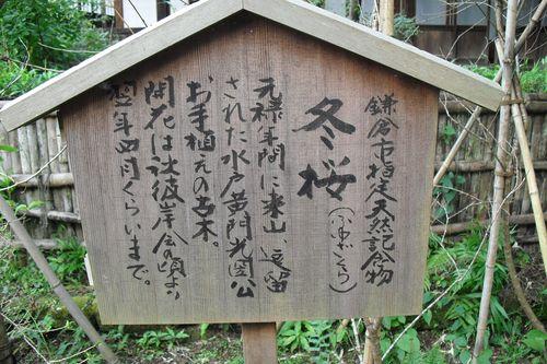 05) 鎌倉市二階堂「瑞泉寺」