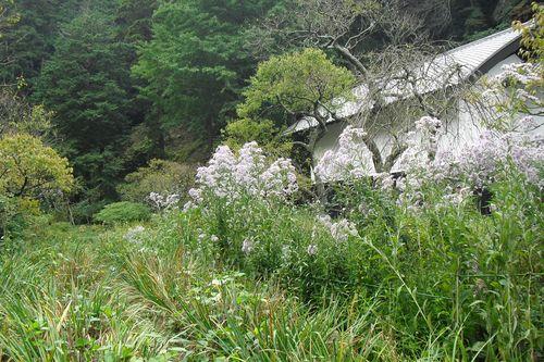 07) 鎌倉市山ノ内「東慶寺」