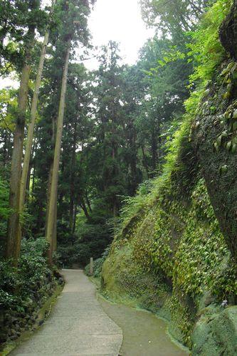 10) 鎌倉市山ノ内「東慶寺」