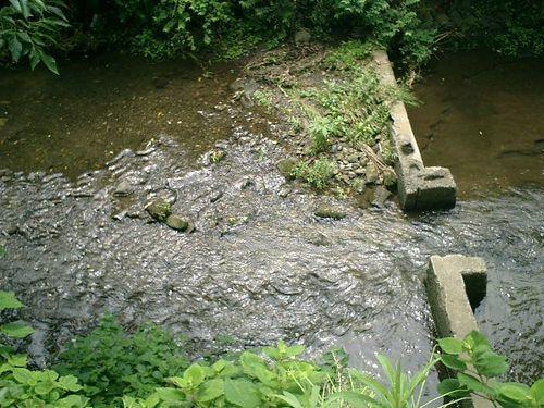 05) 社殿02)の右下を流れる滑川(なめりがわ)_鎌倉市小町「蛭子神社