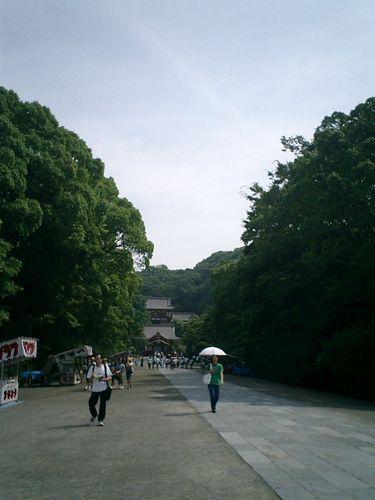05) 鎌倉市雪ノ下「鶴岡八幡宮」