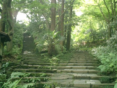 13) 鎌倉市二階堂「瑞泉寺」 夏