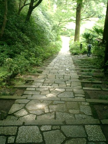 14) 鎌倉市二階堂「瑞泉寺」 夏
