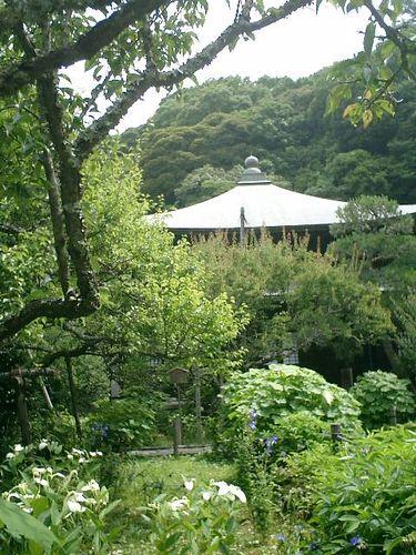 17) 鎌倉市二階堂「瑞泉寺」 夏