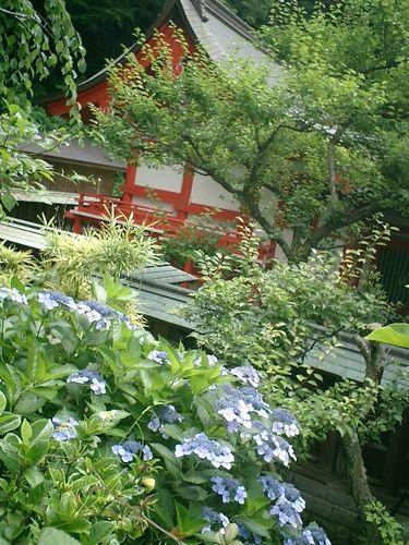 08) 鎌倉市二階堂[荏柄天神社 」 夏