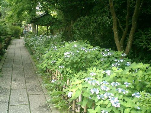02) 山門を通って直ぐの参道。山門をくぐったから、参道と呼ぶのは不適