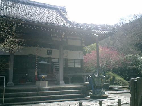 02) 鎌倉市大町「安国論寺」梅の季節終焉を見とどける