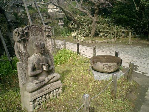 07) 鎌倉市大町「安国論寺」梅の季節終焉を見とどける