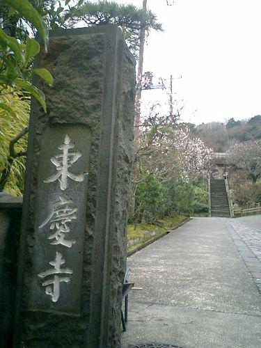 01) 鎌倉市山ノ内「東慶寺」梅の季節_9:05am頃~