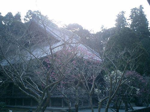 03) 09.02.10鎌倉「妙本寺」