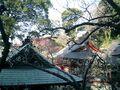 07) 09.02.10鎌倉「荏柄天神社」