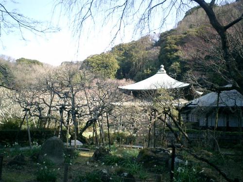 05) 09.02.10鎌倉「瑞泉寺」