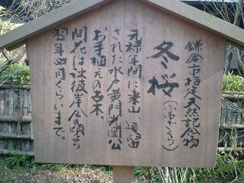 17) 09.02.10鎌倉「瑞泉寺」