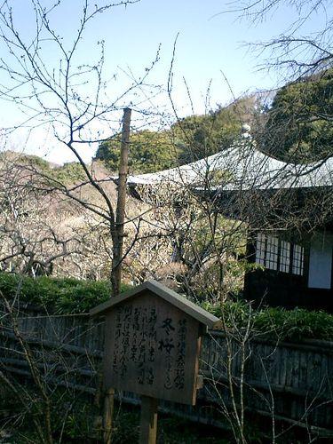 18) 09.02.10鎌倉「瑞泉寺」