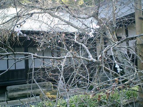 19) 09.02.10鎌倉「瑞泉寺」
