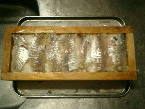 02) 押し型内の飯へ、寿司酢浸けの鯵を載た。