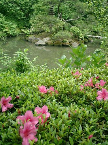 12)鎌倉市長谷「光則寺」庭園