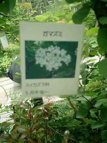 22-1)鎌倉市長谷「光則寺」