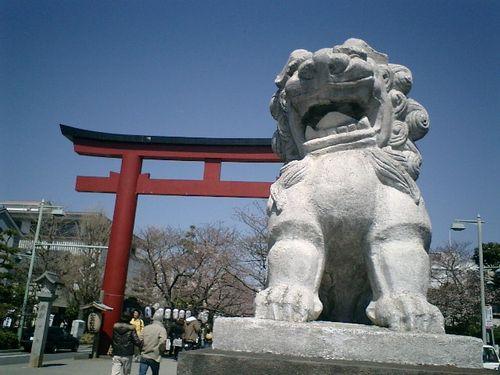 04) 「鶴岡八幡宮」'二の鳥居'&'段葛'の桜