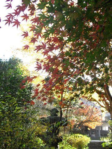 04) 09.12.02 鎌倉市大町「安国論寺」 冬