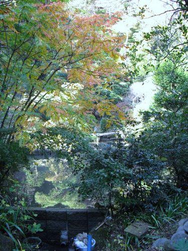 07) 鎌倉「光則寺」_冬