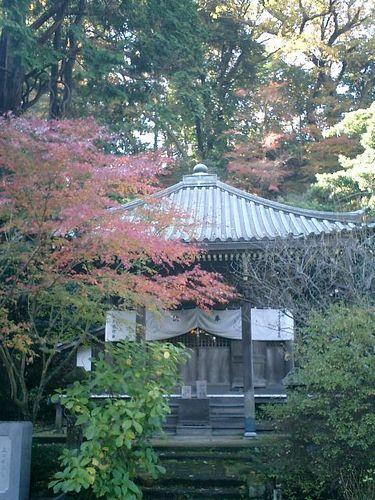 03) 鎌倉「安国論寺」紅葉の季節
