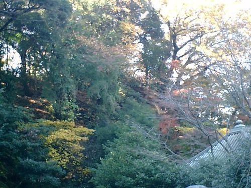 04) 鎌倉「安国論寺」紅葉の季節