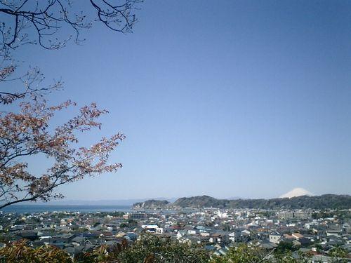 10)鎌倉市大町「安国論寺」桜の季節
