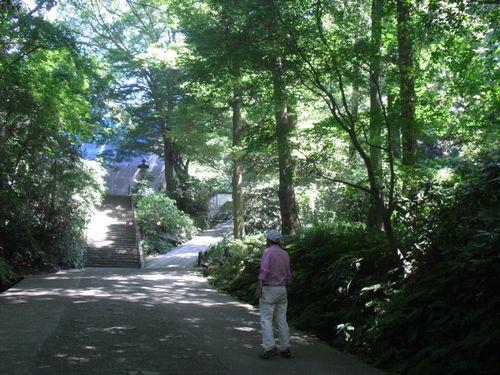 72) 「妙本寺」参道進行中。左奥は、山門修復中の覆いシート。_12:23pm