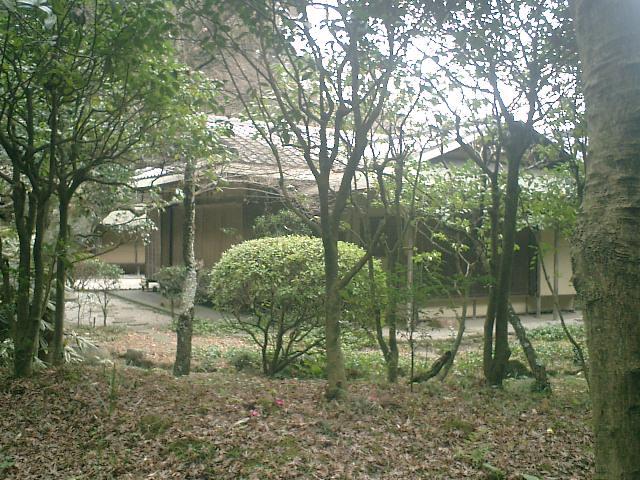 40) 鎌倉「英勝寺」_竹の中庭から書院裏を観る