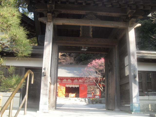D05) 鎌倉「荏柄天神社」梅の頃_9:35am~