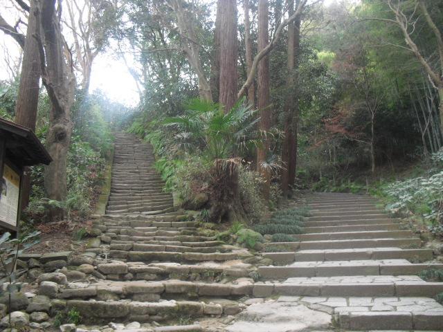 F02) 鎌倉「瑞泉寺」梅の頃」