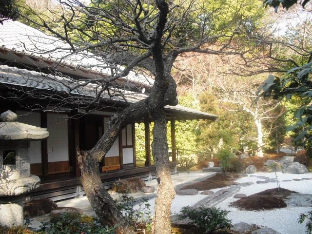 I07) 鎌倉五山第五位「浄妙寺」梅の頃