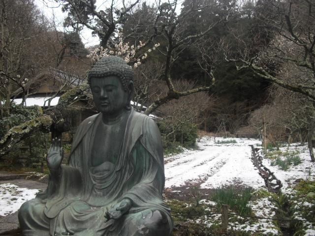 14) 雪の日、鎌倉「東慶寺」梅の頃。11.02.12
