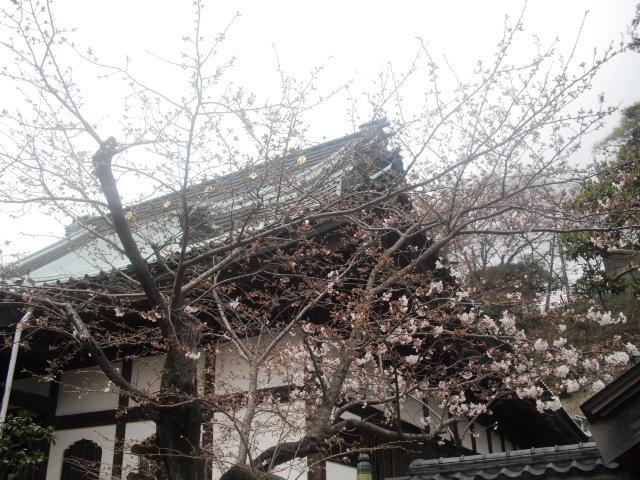 05) 「光明寺」 _ 鎌倉市材木座