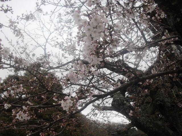 06) 「光明寺」 _ 鎌倉市材木座
