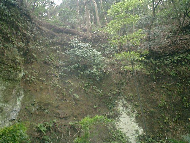 41) 鎌倉「英勝寺」_竹の中庭から見た岩盤の崖